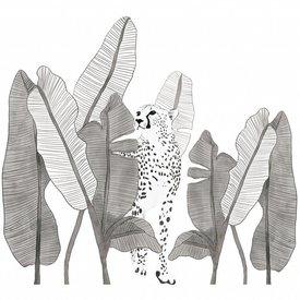 Lilipinso Lilipinso muursticker luipaard