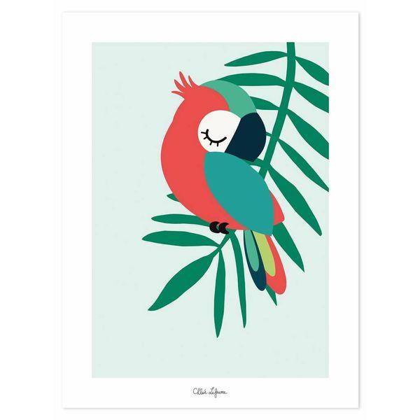 Lilipinso Lilipinso kinderposter papegaai groen