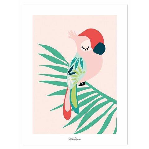 Lilipinso poster kinderkamer papegaai roze