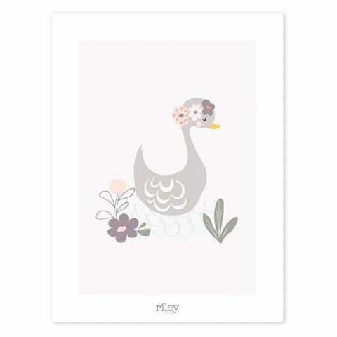Lilipinso poster zwaan met bloemen