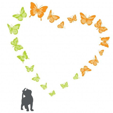 Decowall muursticker poesje en vlinders