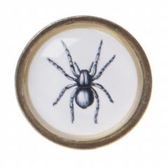Producten getagd met spin