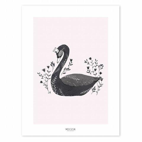 Lilipinso poster zwaan zwart