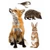 KEK Amsterdam muursticker dieren forest friends set 3