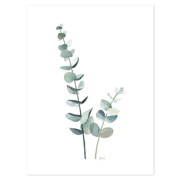 Lilipinso Lilipinso poster Eucalyptus