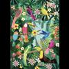 Petit Monkey kinderposter 50 x 70 Rainforest Birds
