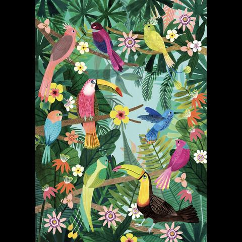 Petit Monkey kinderposter Rainforest Birds