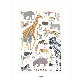 Lilipinso Lilipinso poster kinderkamer wilde dieren