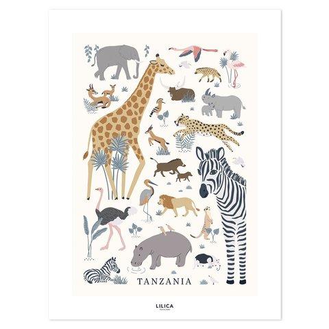 Lilipinso poster kinderkamer wilde dieren