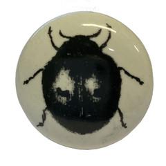 Producten getagd met insect