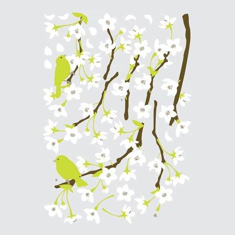 Decowall muursticker witte bloesem