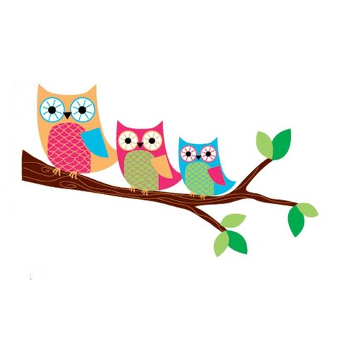 Forwalls muursticker uilen op tak