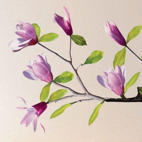 Nouvelles Images muursticker magnolia