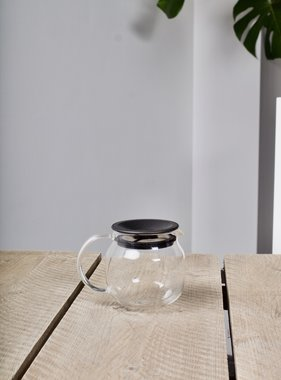 Shirotani tea pot with filter (450 ml)