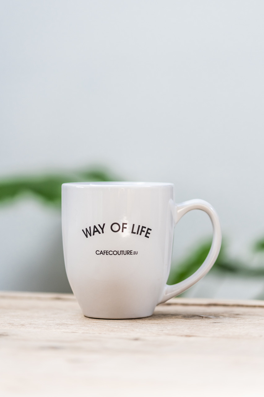 WAY OF LIFE mok
