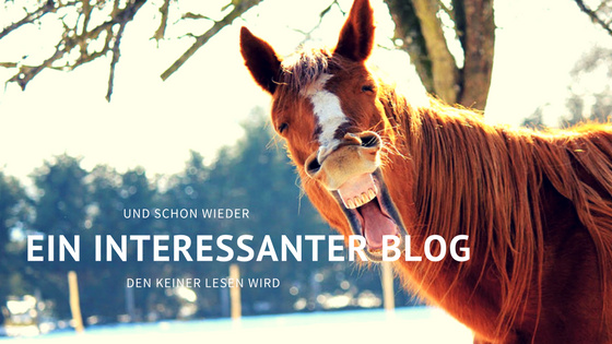 Wieder ein Blog, den keiner lesen wird