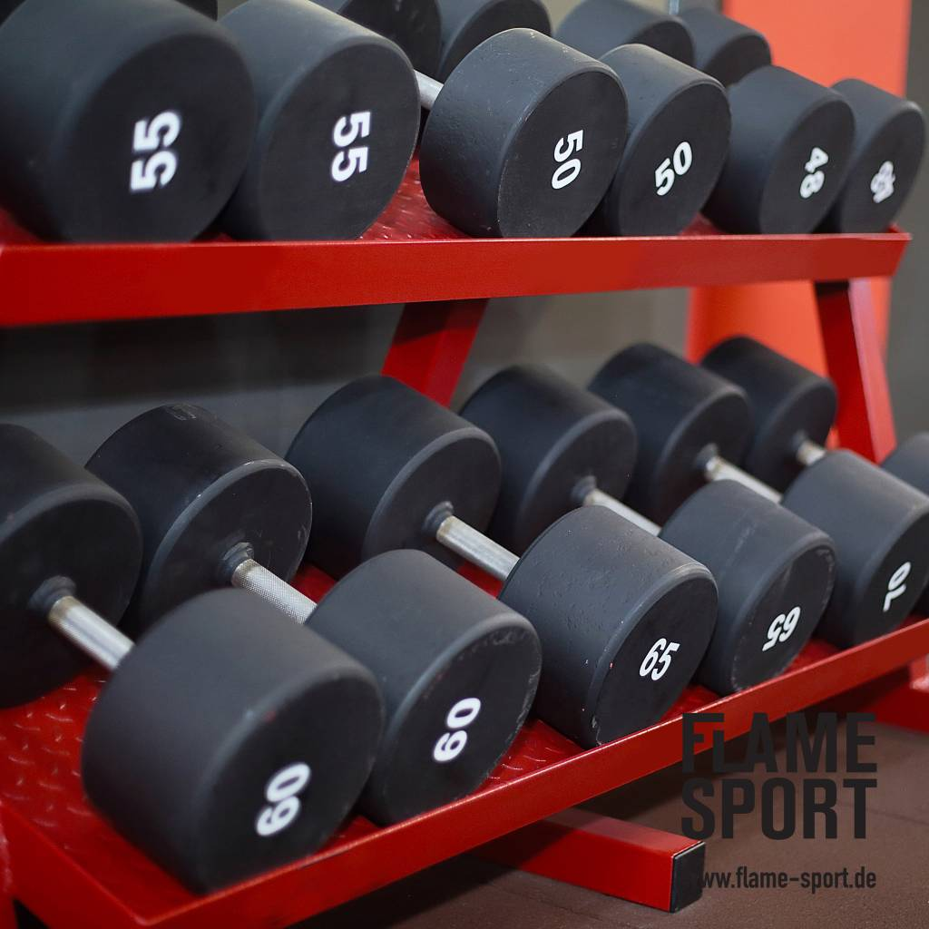 Fixed Weight Dumbbells (15Z)