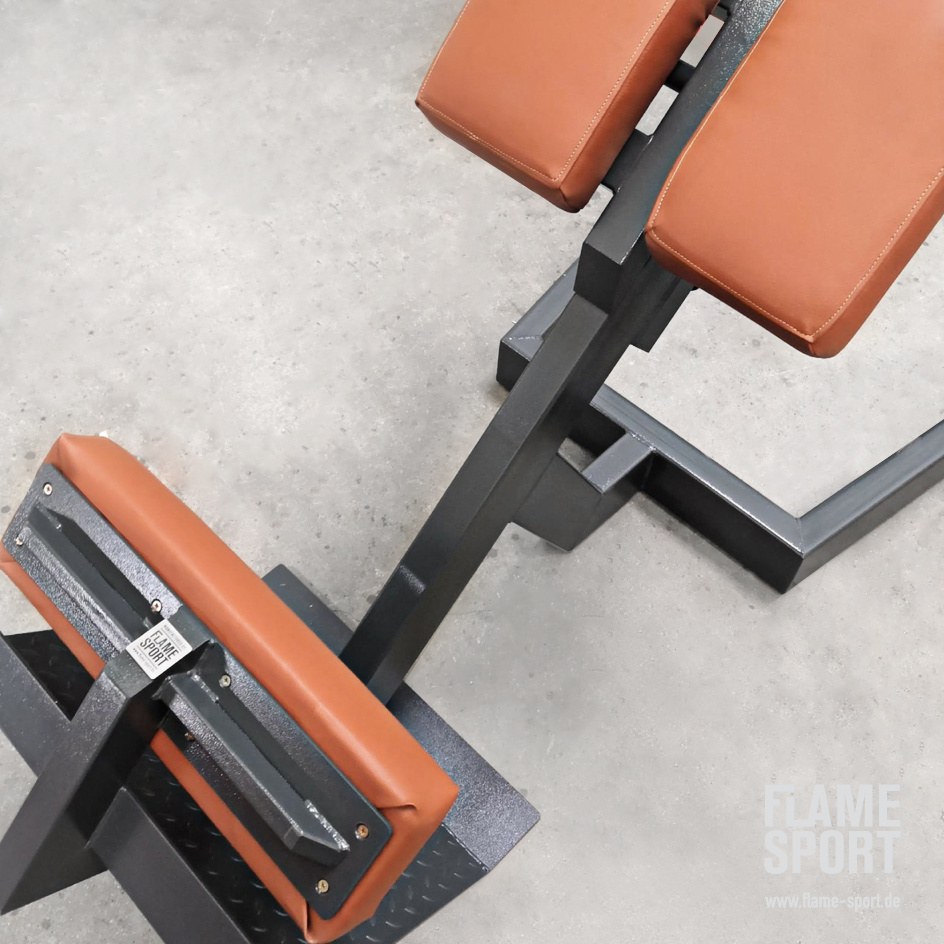 Hyperextension bench/ Roman Chair (3L)