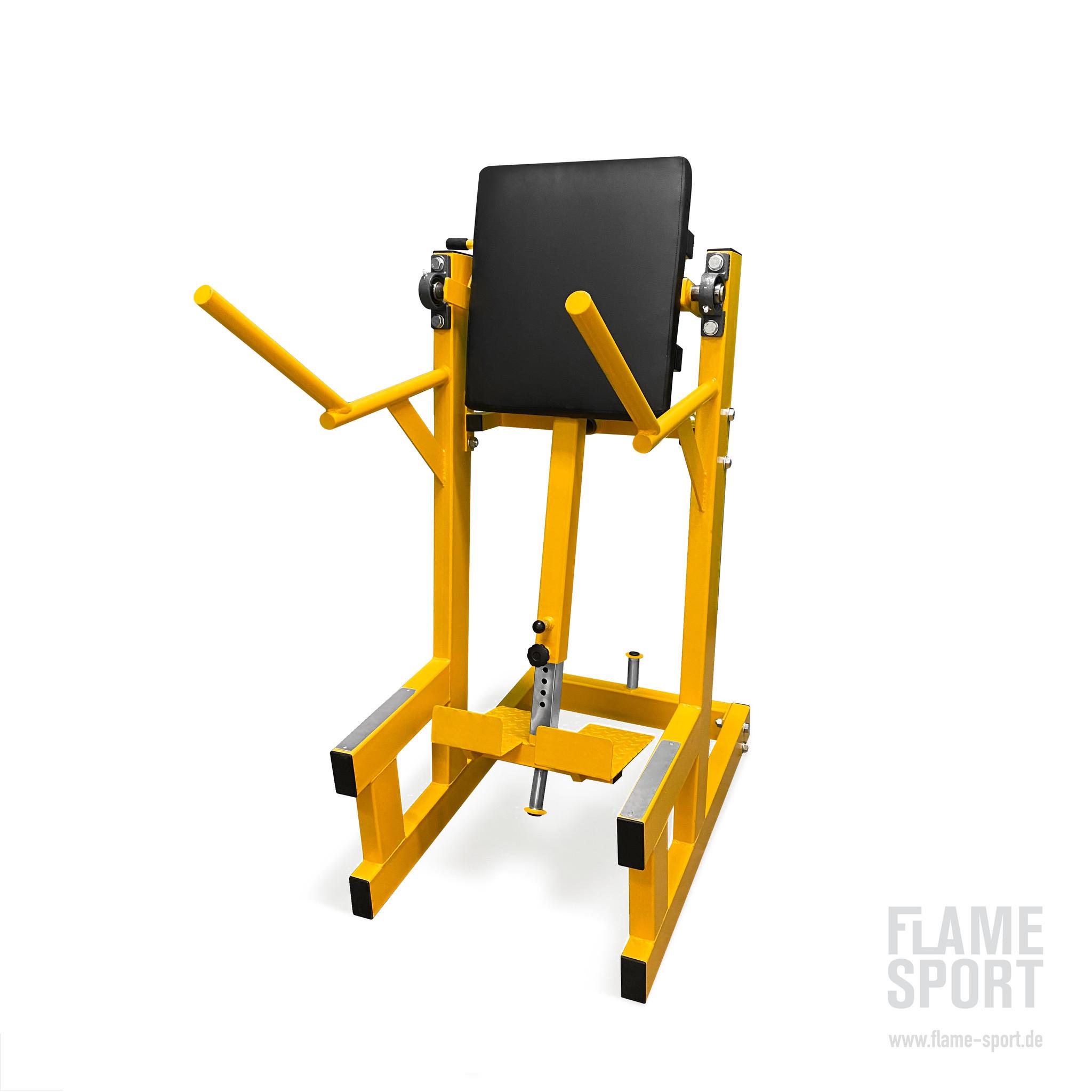 Leg Raise Machine (4E)