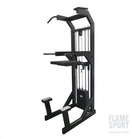 Dips / Pull up / Chin up Machine (3KP)
