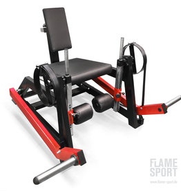 Leg Extension Machine (6D)