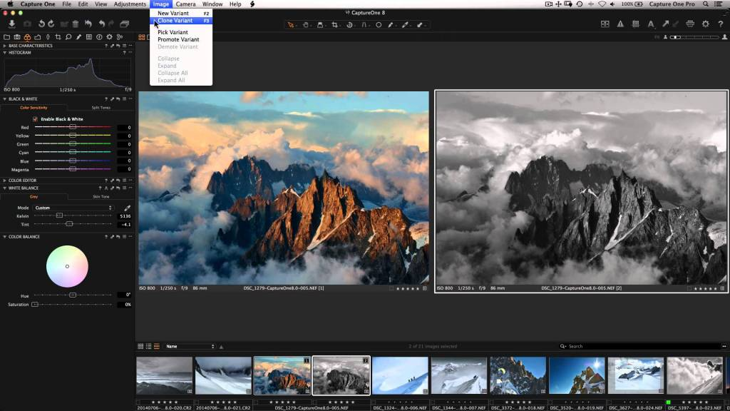 Capture One Pro 10 - 15 seats