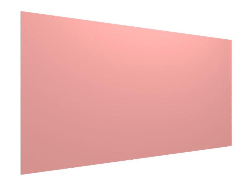 Vicoustic  Flat Panel VMT 1190x595x20mm Ref.31A