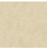 Artnovion Andes Dimi - Absorber  FG | (T06) Nebbia