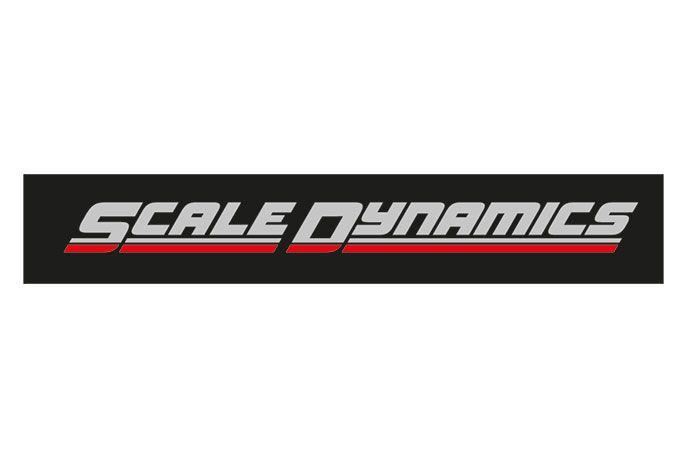 Scale Dynamics