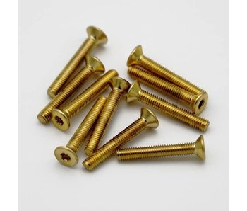 RC OMG Golden Screw Flat Head M3 x 20mm (10pcs)