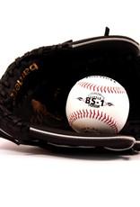 GBJL-5 Baseball set baseball glove and ball, youth (JL-95, BS-1)