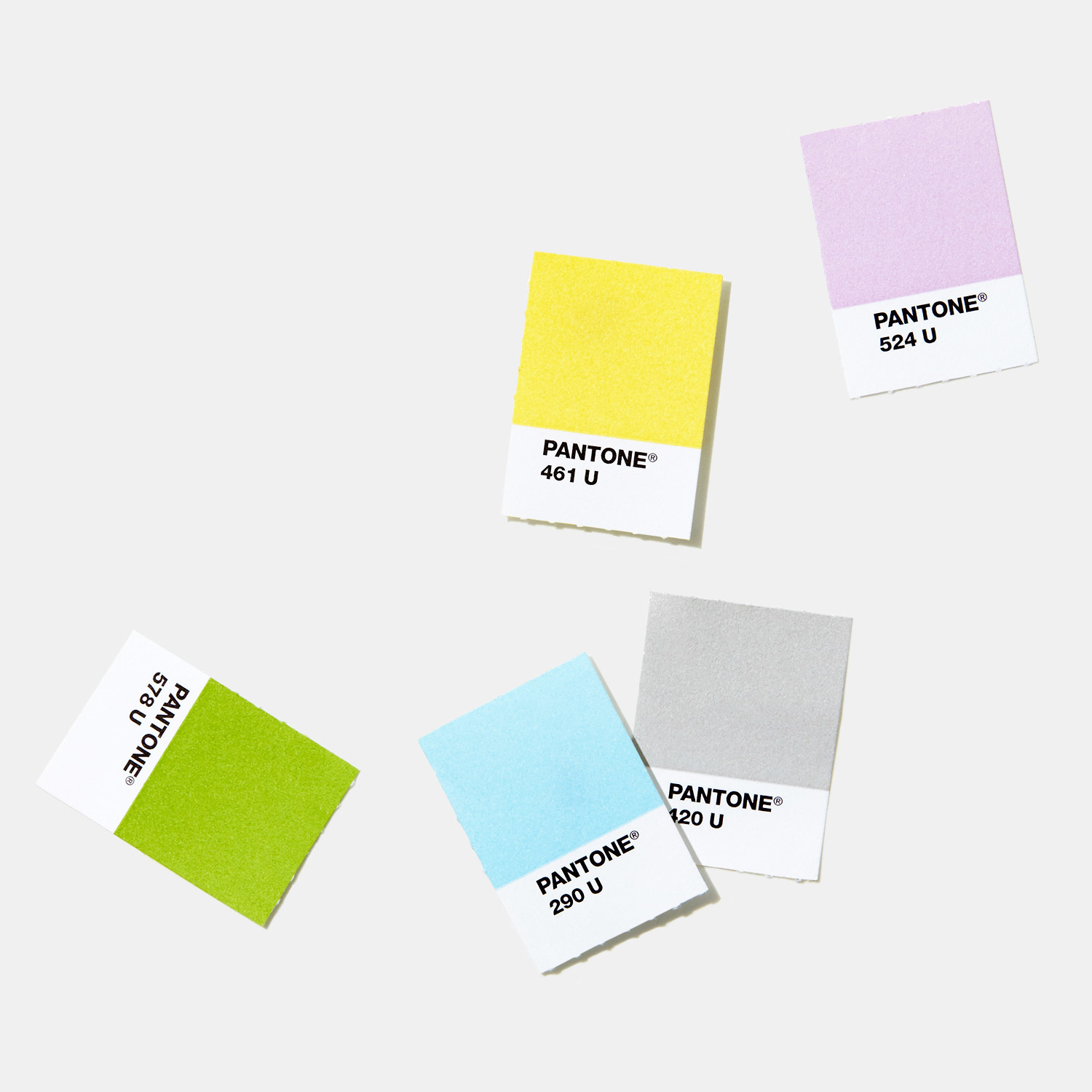 PANTONE PANTONE PLUS Solid Chips (Coated & Uncoated)