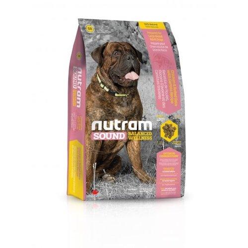 Adult Grote ras Hond S8 - 13,6KG