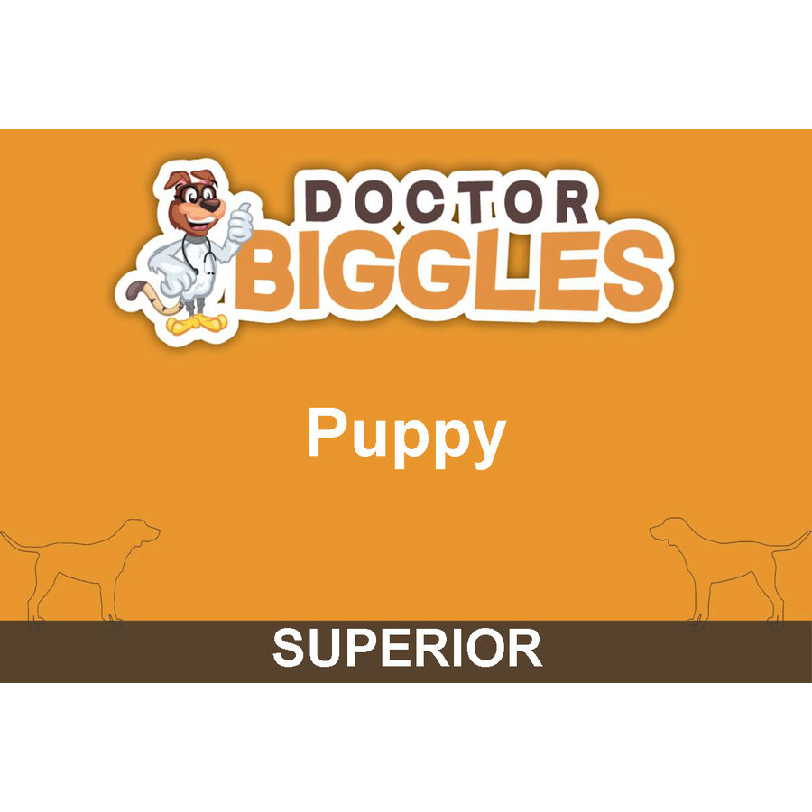 Superior Geperst Puppy 4KG-1