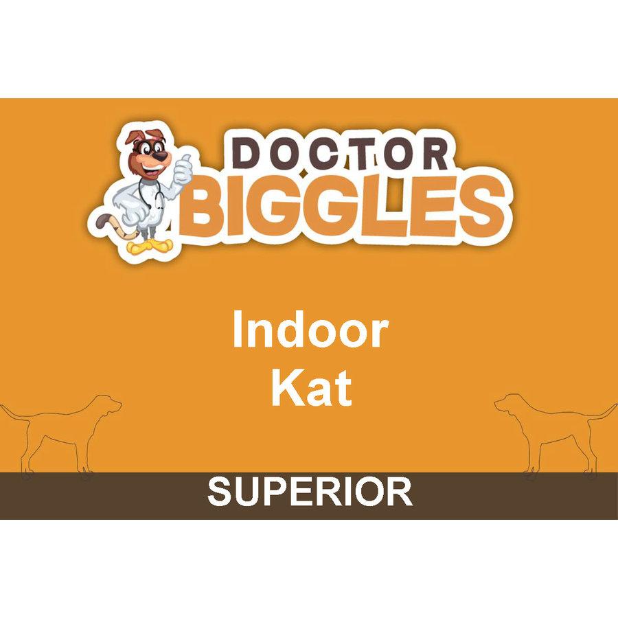 Superior Kat Indoor 10KG-1
