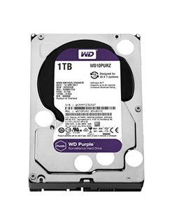 Purple 1000GB SATA III interne harde schijf