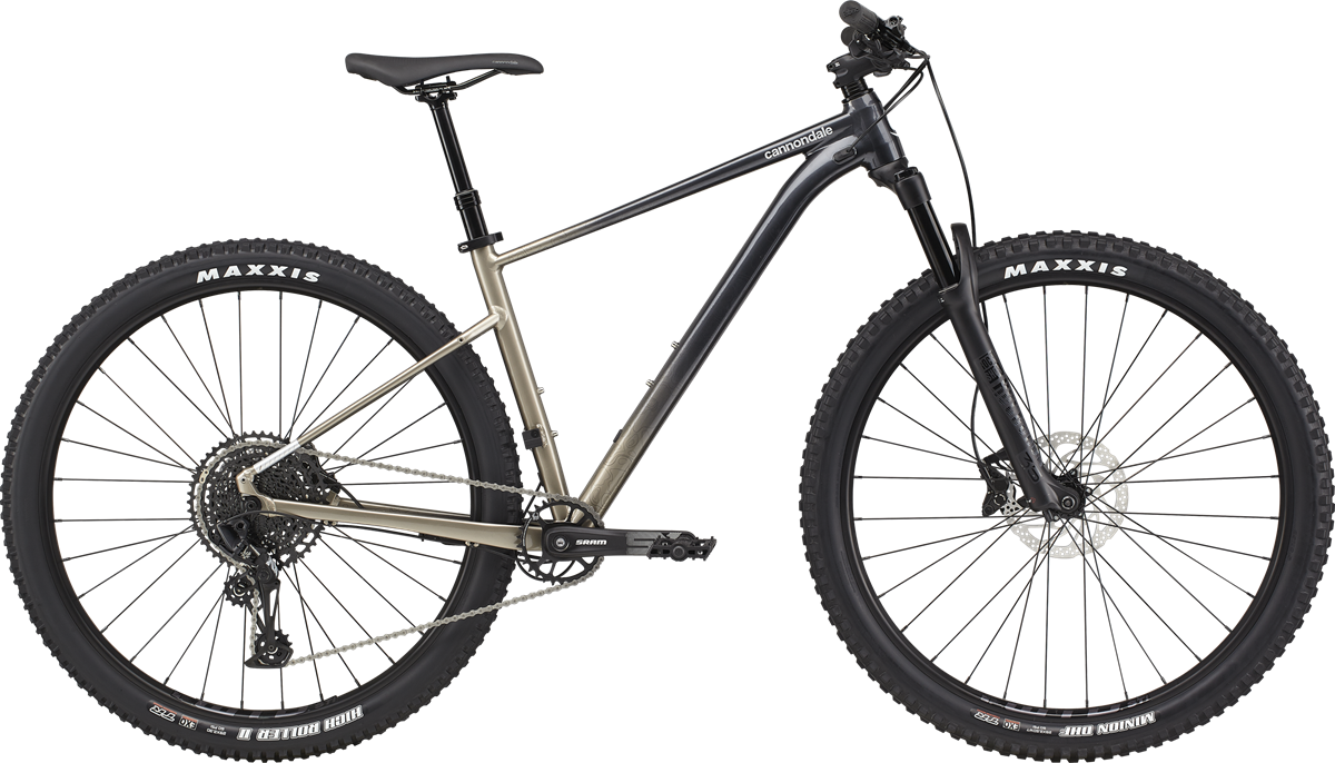 Cannondale Trail SE 1 Modell 2021
