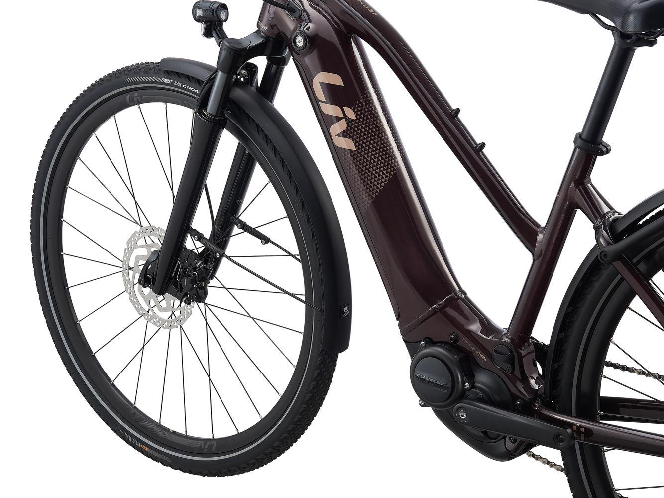 Liv Amiti-E+2  Modell 2021