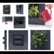 LivePicture GO rood,  levend planten schilderij