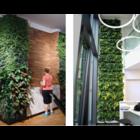 LivePanel, een duurzame plantenwand