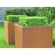 Cortenstaal plantenbak Andes 50x50x50cm.