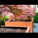 Cortenstaal plantenbak Andes 100x100x80cm.