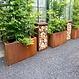 Cortenstaal plantenbak Andes 100x40x40cm.