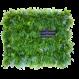 LivePanel PACK 6X4  alles-in-1 groene wandsysteem