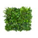 LivePanel PACK 3X2  alles-in-1 groene wandsysteem