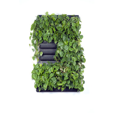 LivePanel PACK 2X3  alles-in-1 groene wandsysteem