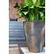 Ficonstone plantenbak Oscar 72x105cm.