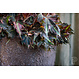 Ficonstone plantenbak Jesslyn 50x44cm.