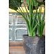 Ficonstone plantenbak Bernd 53x60cm.