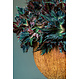 Ficonstone bloempot Ruby 42x26cm.